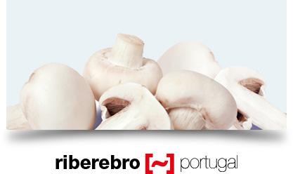 Riberebro Portugal, especialistas em cogumelos, verduras, legumes, espargos e pimentos piquillos.